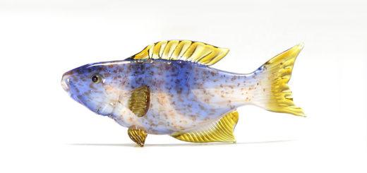 ビットリオ・コスタンティーニ 熱帯魚 ホワイト ブルー イエロー
