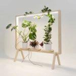 植物用フレーム 「 Green Frame 」