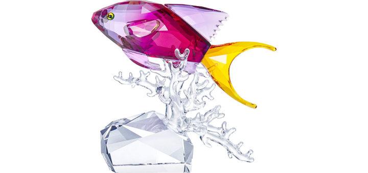 スワロフスキー フィギュリン アンティアス ( Swarovski Figurines Anthias Fish )